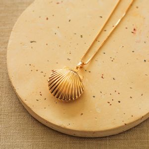 Colar-Relicario-Concha-Longo-Dourado-Folheado-01